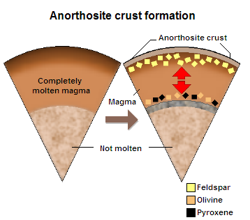 Formation of the anorthosite crust