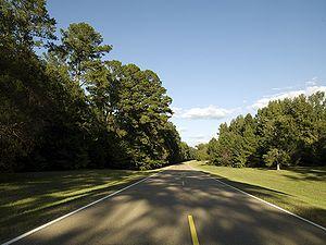 Natchez-Trace-Parkway-Highsmith.jpeg