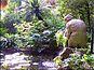 Jardín botánico histórico La Concepción