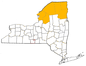 North Country.png