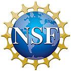 Nsf1.jpg