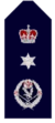 Nsw-police-force-commissioner.png