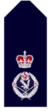 Nsw-police-force-deputy-commissioner.png
