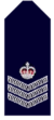 Nsw-police-force-senior-sergeant.png