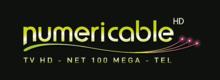 Description de l'image  Numericable logo 2010.png.