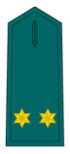 Divisa de teniente