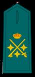 Divisa de teniente general