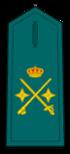 Divisa de general de División