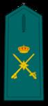 Divisa de general de Brigada