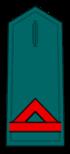 Divisa de guardia civil de primera