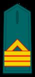 Divisa de sargento primero