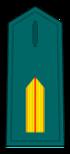 Divisa de brigada