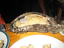 Photo of 2 feet (0.61 m) long open oyster on plate