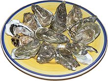 Photo of 12 oysters on plate.