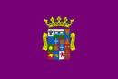 Drapeau de Province de Palencia