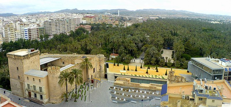 Vue panoramique du centre-ville et de la palmeraie.