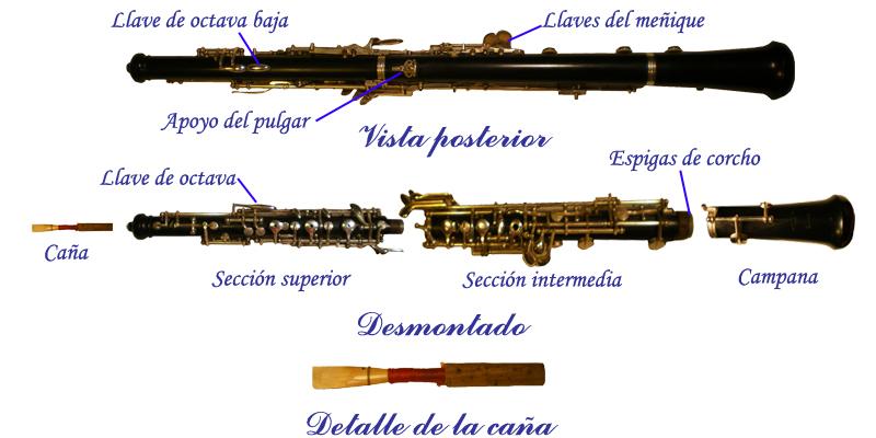 Partes del Oboe2.jpg