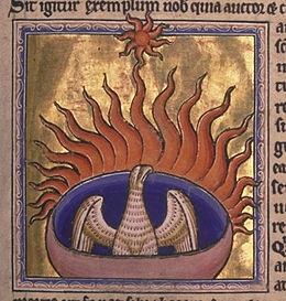 Phoenix detail from Aberdeen Bestiary.jpg