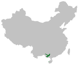 Ping in China.png