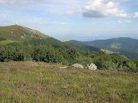 Image illustrative de l'article Parc naturel régional des ballons des Vosges