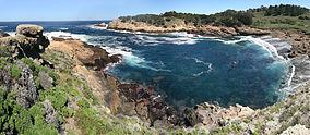 Point Lobos 17.jpg