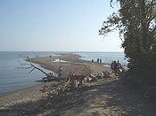 Point Pelee looking south.jpg