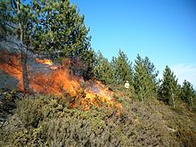 A small fire on the slope of a hill. The hill features small, green shubbery and some trees. A person in light-colored clothing in seen in the background, some distance from the flames.