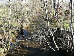 La Queue d'âne vue vers l'amont, une cinquantaine de mètres avant sa confluence avec la Côle.