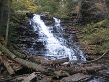 Photo of a large waterfall that cascades down a sloping rock face composed of many layers. Green vegetation surrounds the falls, with large tree trunks at the base of the falls.