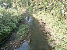 Small water-filled ditch between grassy banks.
