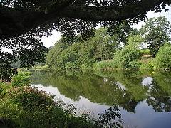 River Teviot.JPG