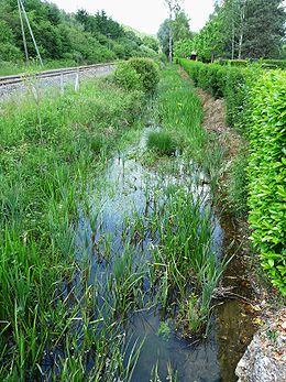 Le ruisseau de Saint-Geyrac à Sainte-Marie-de-Chignac, à la Rebière, le long de la voie de chemin de fer Périgueux-Agen