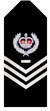 Sa-police-senior-sergeant-first-class.png