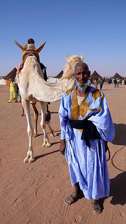 Sahrawi&camel.jpg
