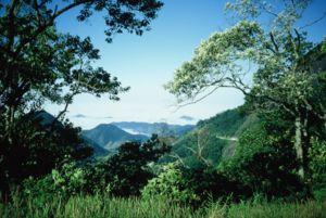 Serra da Bocaina.JPG