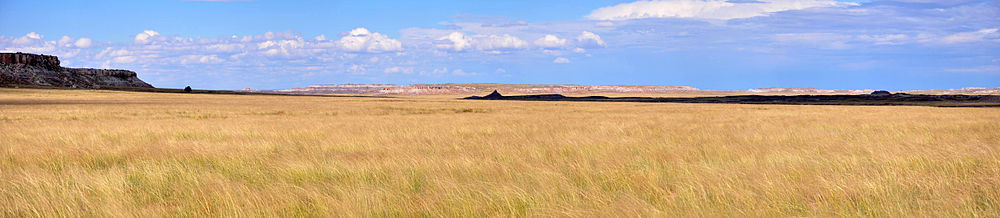 Panorama of prairie covered with short brown and yellow grasses. Hills rise in the distance, and a large cloud shadow darkens a small part of the prairie.