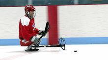 Un joueur de hockey sur luge maniant le palet.