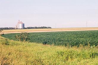 Soja y silos Paraguay 01.jpg