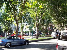 Three and four story buildings surround the tree-filled South Park.