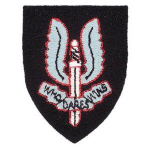 Special Air Service cap badge.jpg