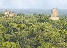 La antigua ciudad de Tikal (Guatemala) sirvió como escenario para la base rebelde en la luna Yavin.