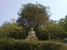 Stone statue of seated Buddha surrounded by trees and shrubs
