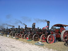 photograph of a row of traction engines at the Great Dorset Steam Fair