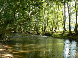 Strumeshnitsa-river-2.jpg