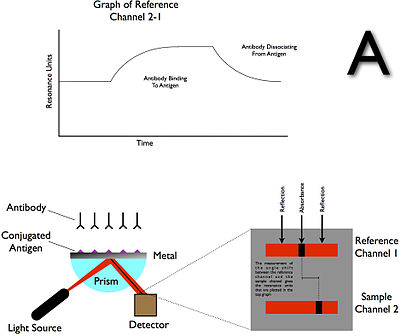Surface Plasmon Resonance (SPR) Operations A