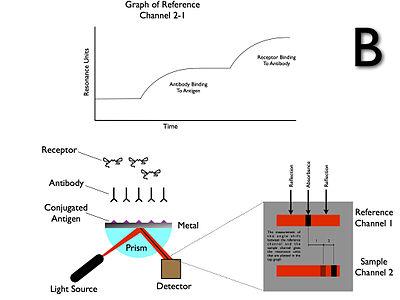 Surface Plasmon Resonance (SPR) Operations B
