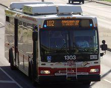 TTC Orion VII NG HEV Bus 1303.jpg