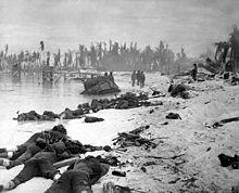 Tarawa beach HD-SN-99-03001.JPEG