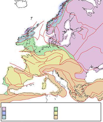 Tectonic map Europe.jpg