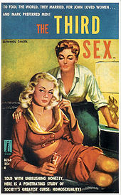 "A brightly painted book cover with the title ""The Third Sex"", showing a sultry blonde wearing a red outfit showing cleavage and midriff, seated on a sofa while a redhead with short hair places her hand on the blonde&squot;s shoulder and leans over her, also displaying cleavage by wearing a white blouse with rolled-up sleeves"